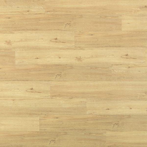 Sunset Oak res 3161-3041